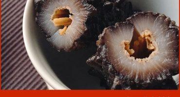营养学专家施学斌解读:女性吃海参的好处