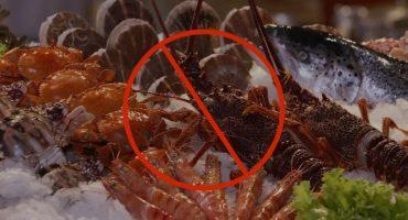 海参嘌呤高不高?痛风能吃吗?