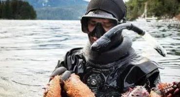 美国癌症专家Ty M. Bollinge谈海参在医疗领域的惊人作用|2021阿拉斯加海参捕捞10/5开季